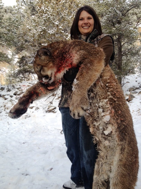 Elk, Pronghorn, Mountain Lion Hunting New Mexico - USA